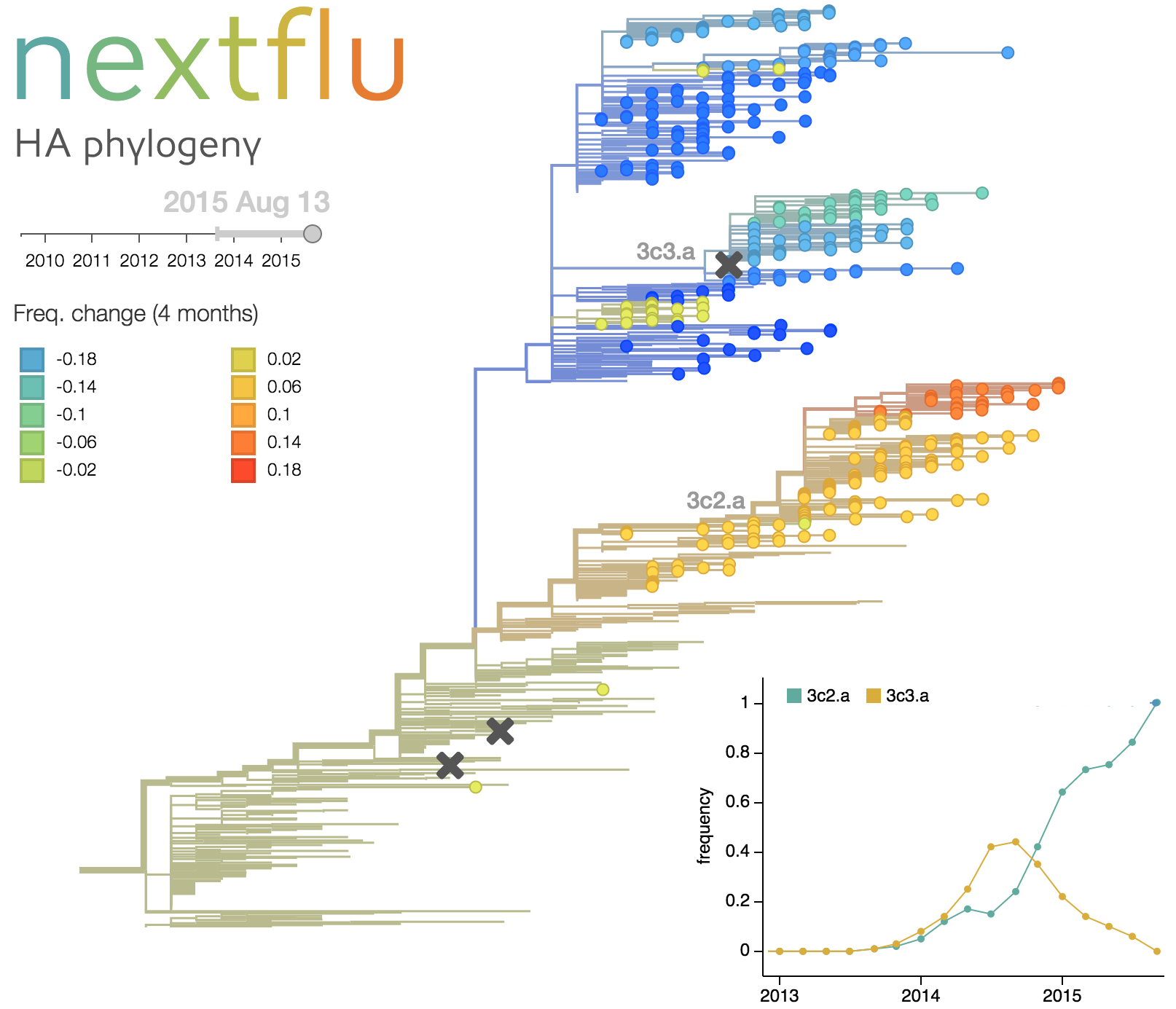 Phylogenetic analysis of influenza